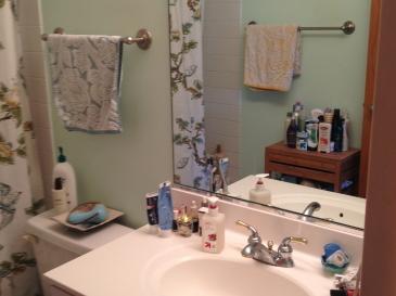 bathroom 1 (IMG_5541)